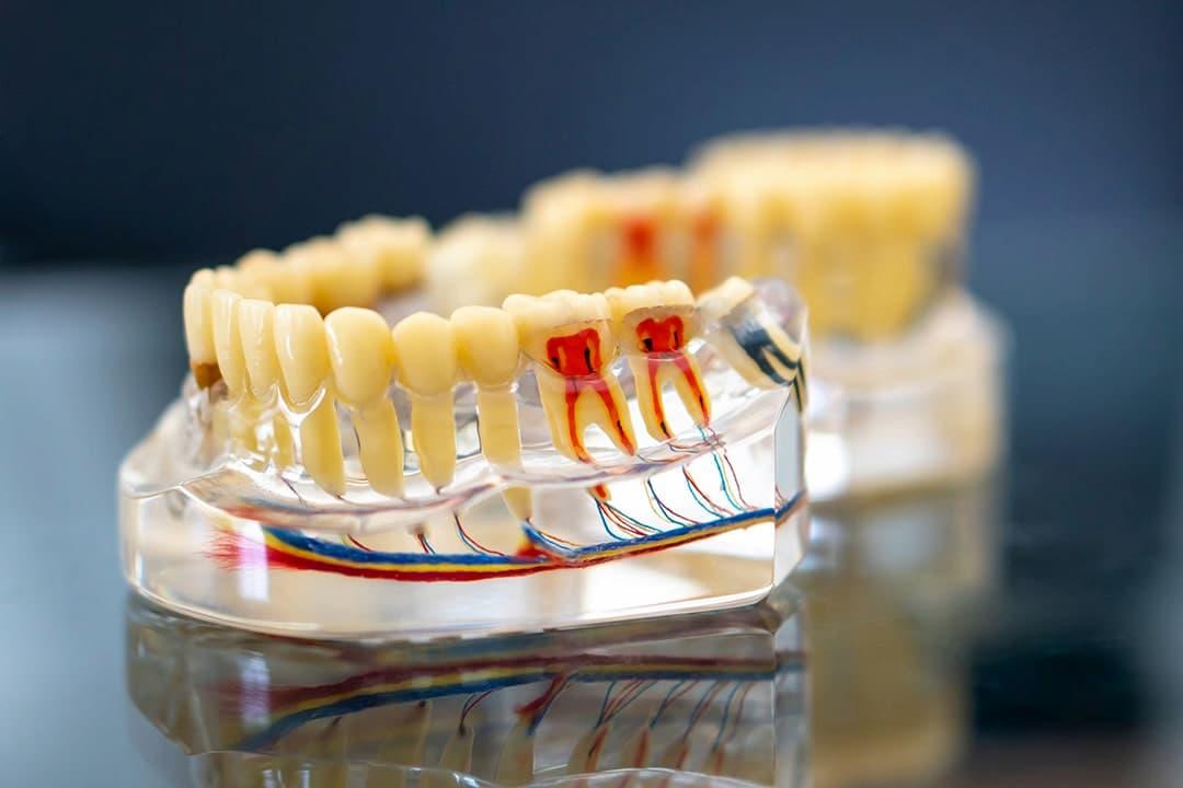 Única Odontologia | Fotos da clínica